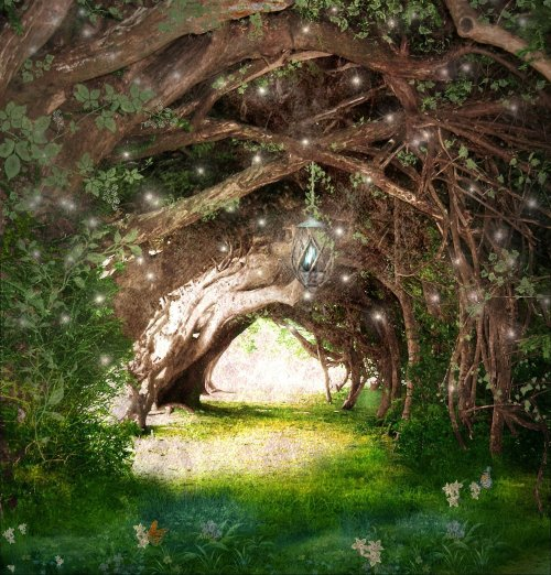 Faeries_Path